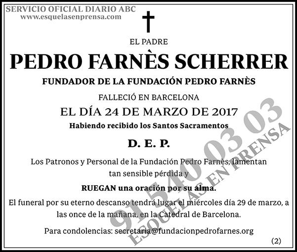 Pedro Farnés Scherrer